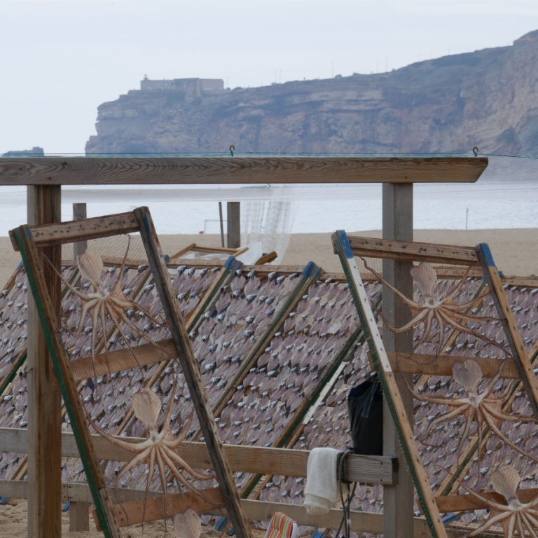Drying fish and octopuses at the south end of Nazaré Beach, looking towards the lighthouse and fort of Sítio on the cliff.