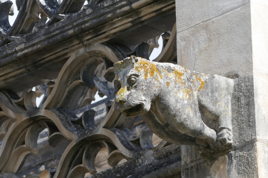 The 15th c. Gothic cloister in the Monastery of Batalha, a UNESCO World Heritage Site, features some interesting gargoyles, including this ... dog?