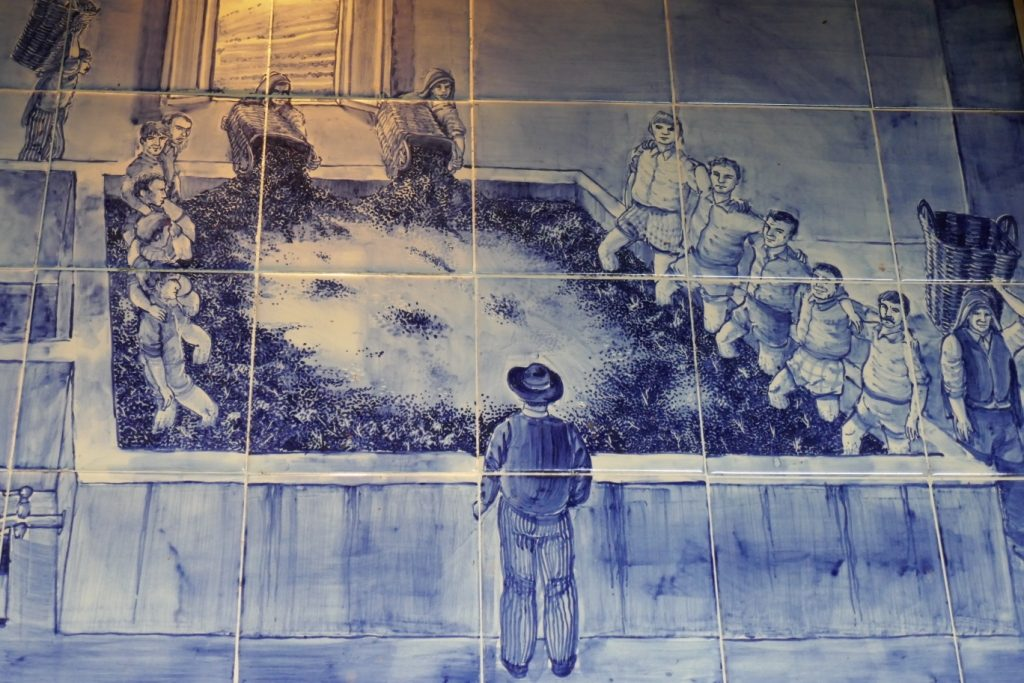 Blue tiles (azulejos) show foot treading grapes for port wine, which is still done today. At Quinta Santa Eufemia winery in Portugal's Douro Valley.