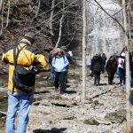 Path to Jackson's Falls, Prince Edward County, Ontario