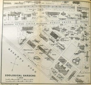 London Zoological Gardens, 1908